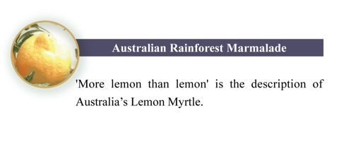 RainforestMarmalade